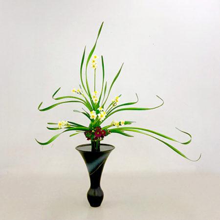Rikka Narcissus